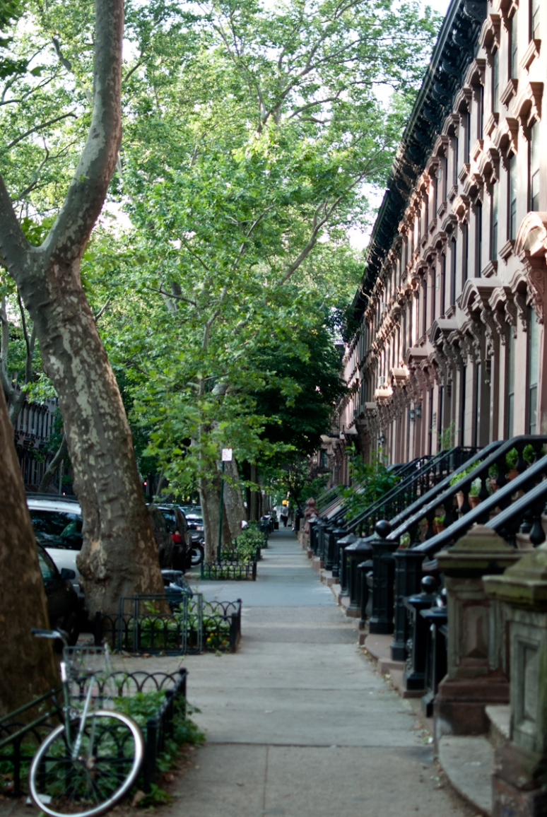 Fort Greene | Clinton Hills | NYC | Urban Architecture | Brooklyn Neighborhood