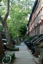 Fort Greene | Clinton Hills | NYC | Urban Architecture | Brooklyn Neighborhood