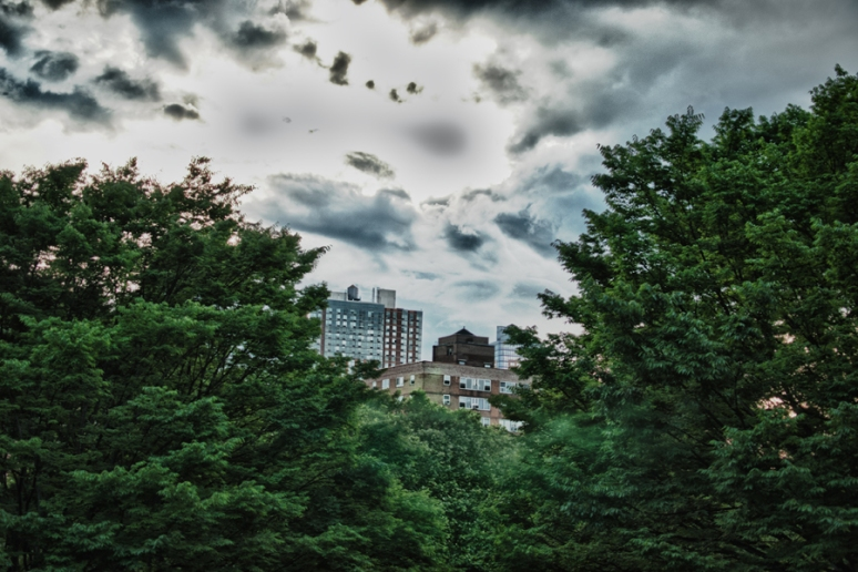 Fort Greene Park | HDR | New York City | Brooklyn | Nature