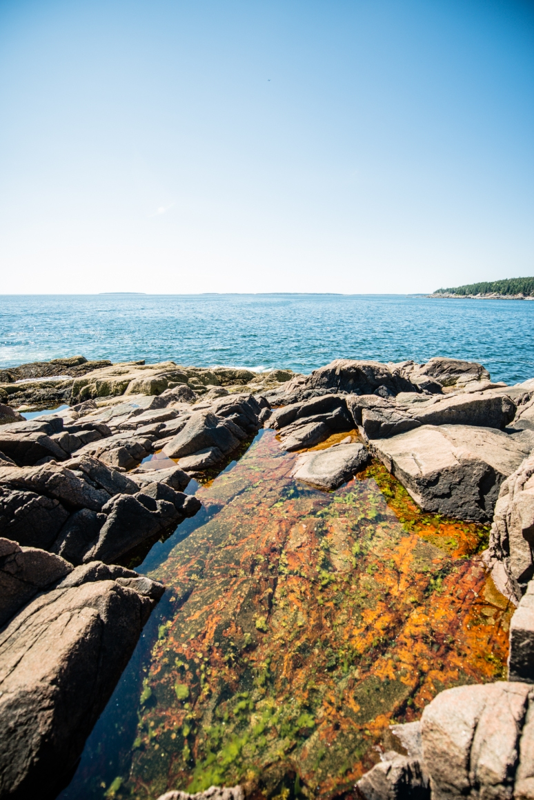Acadia National Park | Nature Photography | Thunder Point | Maine Travel